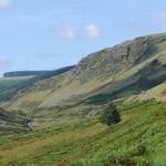 Rural Powys